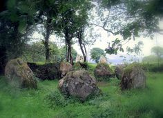 Lissivigeen Stone Circle - This small but superb stone circle can be found in Lissivigeen (a short drive from) Killarney town. These stones are known locally as the seven sisters.