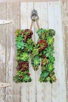 Paint an oversized wooden letter (available in the Craft Department) an earthy brown, and then glue on an eclectic mix of succulents with their stems removed. Finish with a hanger of your choice.