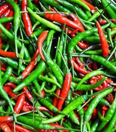 Chilies - 10 Indian Foods That Help You Lose Weight Indian Food Recipes, Indian Foods, Healthy Recipes, Healthy Foods, Yummy Recipes, Easy Weight Loss, Healthy Weight Loss, Reduce Weight, How To Lose Weight Fast