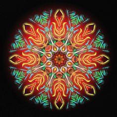 intensité du sentiment ! intensity of feeling ! intensidade de sentimento ! Mandala de Pierre Vermersch Digital Drawings