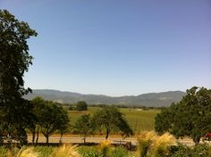 Miner Family Winery in Napa, CA