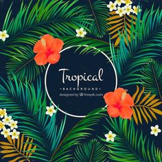 Tropical background of palm trees and flowers Free Vector
