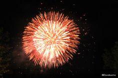 Flower of fire | @Davide Bogliolo #fireworks