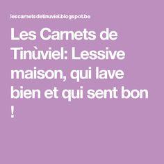 Les Carnets de Tinùviel: Lessive maison, qui lave bien et qui sent bon !