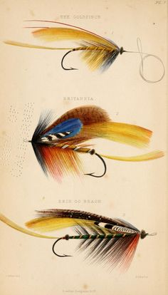 The Goldfinch, Britannia and Erin Go Bragh, Edward Fitzgibbon - Book of the Salmon 1850
