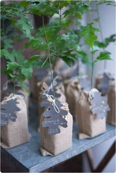 Impress your guests and save the trees by giving your guests a tree to plant. Eco-friendly favors are 'usually' a less expensive option an. Wedding Favor Sayings, Custom Wedding Favours, Thank You Gifts, Gift Packaging, Inspirational Gifts, Decoration, Perfect Wedding, Baby Shower Gifts, Snowman