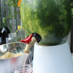 Tap a Watermelon! or How to Make a Watermelon Keg - What a great idea for a picnic, pool party or family reunion!