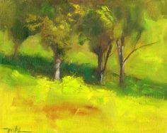 Capay Valley Vineyards Trees