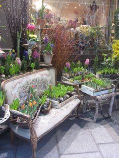 A Flowershop in paris