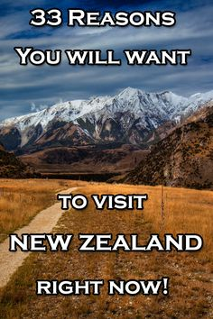 33 Reasons you will want to Visit New Zealand right now | The Planet D