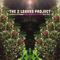 Album Review: The 2 Leaves Project 'Every Ocean Tells A Story'