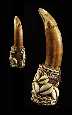 Papua New Guinea | Penis cover from the Sepik region | Made from an extremely large crocodile tooth, shells and natural fiber | ca. 1950s | Sold