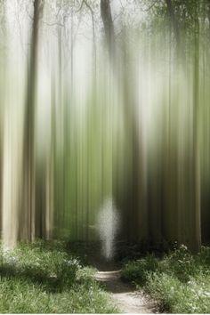 """Walking... """"Into The Unknown"""" by © Ellen Jantzen. °"""