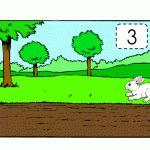 pdf_tavşan