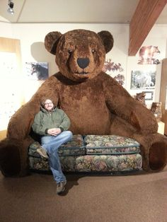 The teddy bear sofa.