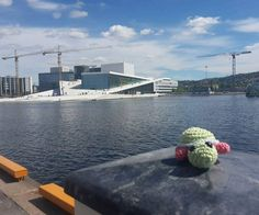 turtle_on_tour:: Kröti on tour  Oslo Opera house Norway #followme #amigurumi #turtle #tour #holiday #trip #crochet #lovely #unique #nature #lovely #inspiration #opera #oslo #norway #happy #handmade #funny #leisuretime #freetime #music #water #romantic #sunshine #cute #colorful