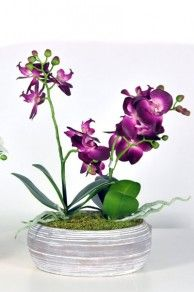 Artificial Orchid Display