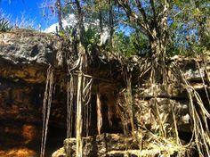 Cenote Xbatún | Viaje Magazine