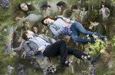 Bella & Edward - TwiFans-Twilight Saga books and Movie Fansite