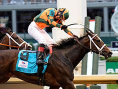 Believe You Can has been retired  Winnings: 14 Starts: 8 - 0 - 2, $1,250,324  At 2: Won Tempted S. (G3,Bel,6f) At 3: Won Kentucky Oaks (G1,CD,9F), Fair Grounds Oaks (G2,FG,8.5f), Silverbulletday S. (FG,1m70yds) 3rd Mother Goose S. (G1,Bel,8.5F)  At 4: Won Tiffany Lass S. (FG,8.5F), New Orleans Ladies S. (FG,8.5F) 3rd La Troienne S. (G2,CD,8.5F)