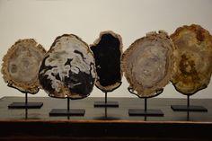 Bois fossilisé Decoration, Firewood, Saints, Texture, Crafts, Unique Home Decor, Fossils, Woodwind Instrument, Decor