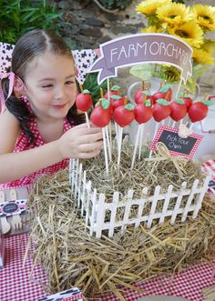 "Farm Animal Barnyard Party {Joint Birthday Mini ""Farm Orchard"" with homemade apple cake pops displayed in a stand covered with hayMini ""Farm Orchard"" with homemade apple cake pops displayed in a stand covered with hay Farm Animal Party, Farm Animal Birthday, Barnyard Party, Farm Birthday, Farm Party, First Birthday Parties, Birthday Party Themes, Birthday Kids, Cake Pop Centerpiece"