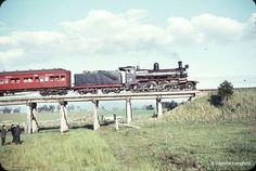 1966 - Yering - Yarra Glen Up Passenger D3 639