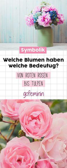 Blumen-Symbolik: Wir verraten euch, welche Blumen welche Bedeutung haben #blumensymbolik #symbolik #blumen #welcheblumenwelchebedeutung