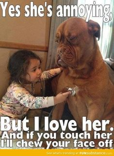 i could only imagine this is what my animals said to themselves when i was annoying! You are in the right place about Animal Memes funny Here we offer you the most beautiful pictures about the Anima Animal Humour, Funny Animal Jokes, Funny Dog Memes, Cute Memes, Funny Animal Videos, Animal Quotes, Funny Baby Humor, Boxer Memes, Dog Videos