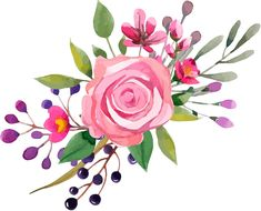 Watercolor Cards, Watercolor Flowers, Watercolour Painting, Painting & Drawing, Watercolors, Floral Illustrations, Painting Inspiration, Flower Art, Art Drawings