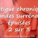 Fatigue chronique, glandes surrénales épuisées [2/3] Adrenal Glands, Chronic Fatigue, Exercises, Food, Recipe