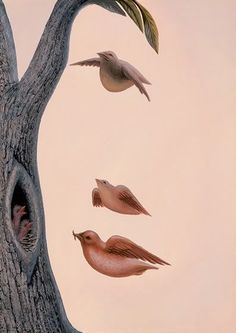 Just Some Birds and a Tree