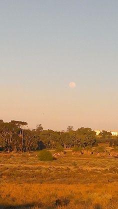 Outskirts of Buronga NSW