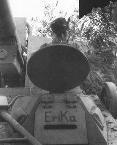 Panzerjäger Nashorn driver