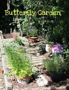 "Butterfly Garden (ideas: raised ""deck,"" outdoor chalkboard, path with fence made of found branches, homemade chimes, plants to attract butterflies, stool (log) to sit on, rock garden (for bugs))"