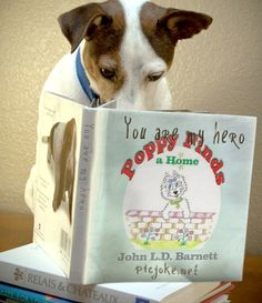 Poppy Finds a Home by John L.D. Barnett. Poppy is a story inspired by the author's own beloved dogs and will be warmly received by children everywhere.