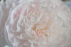 make peonies from coffee filters.