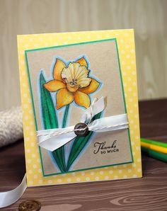 A Card-making Blog by Natasha Trupp