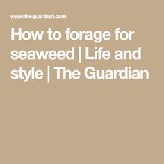 How to forage for seaweed | Life and style | The Guardian