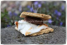 Classic Campfire S'more - creative s'mores by Madyson's Marshmallows