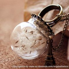 Nature Dandelion Jewelry Necklace Pendant Gift