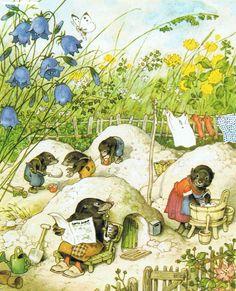 Gartenfest in Blumenhausen / Illustrated by Fritz Baumgarten, written by Erich Heinemann.