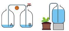 Vyrobte si jednoduchý zavlažovací systém pre rastlinky - Pestovanie - Záhrada a príroda   Hobby portál