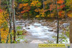 Kancagamus Highway em New Hampshire #Fall #NewEngland #Kancagamus #NewHampshire