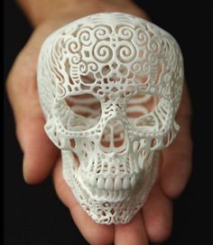Skull Sculpture Crania Anatomica Filigre small by shhark on Etsy. Another beautiful skull. 3d Printed Objects, 3d Modelle, Sculpture Projects, Vanitas, Skull And Bones, Art Design, Oeuvre D'art, Creations, Carving
