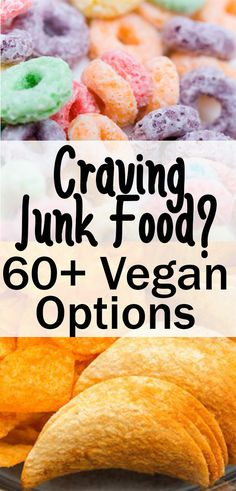 When you are craving vegan junk food, accidentally vegan items are the way to go! These products are the perfect snacks, desserts, or dinner. This list has easy treats and lets you know which… More