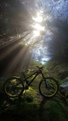 A nice pic of my bike in heaven. This is where I buried my puppy, then the clouds parted.