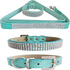 WwWSuppliers Teal Green PU Leather Crocodile Bling Dog Puppy Pet Adjustable Collar & Teal Green Bling Leash Lead Elegant Flashy Dazzling Fancy Diva Luxury Fashion Combo (Small) - http://www.thepuppy.org/wwwsuppliers-teal-green-pu-leather-crocodile-bling-dog-puppy-pet-adjustable-collar-teal-green-bling-leash-lead-elegant-flashy-dazzling-fancy-diva-luxury-fashion-combo-small/