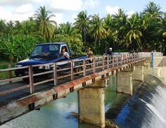 Saluran Pekik Jamal terletak di perbatasan antara Kecamatan Wates dengan Kecamatan Panjatan. Terdapat jembatan yang menghubungkan keduanya. Selain itu buah kelapa jenis Bojong Bulat di sebelah selatan jembatan ini juga terkenal kualitasnya