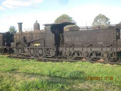 NSWGR Steam Locomotive sitting derelict in a paddock in Dorrigo NSW Australia